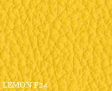 PELLE LEMON F24
